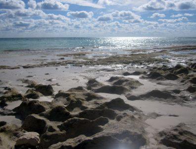 Bahamas Condo